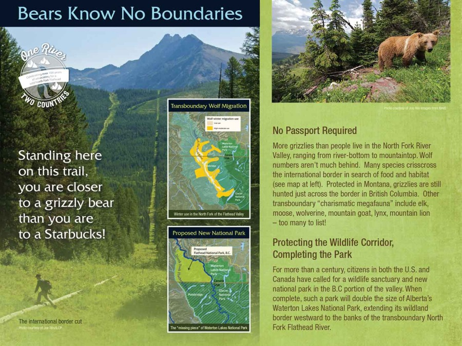 flathead river interpretive trail image 6