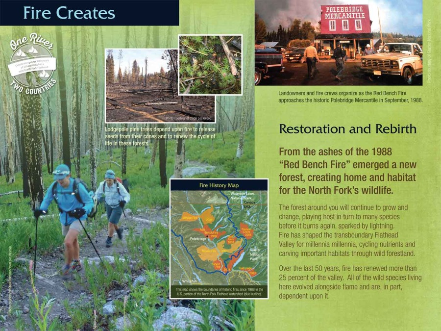 flathead river interpretive trail image 7