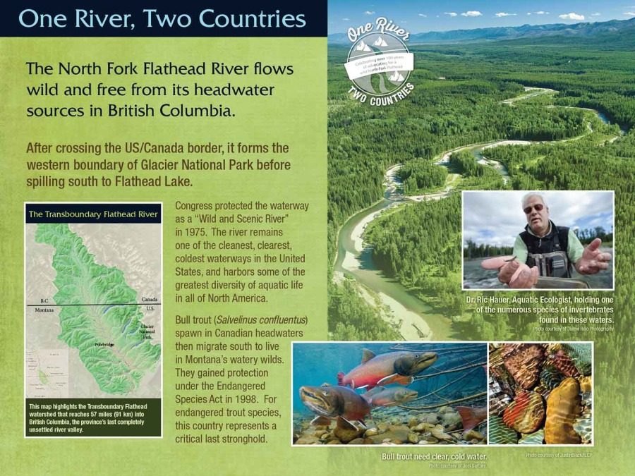 flathead river interpretive trail image 5